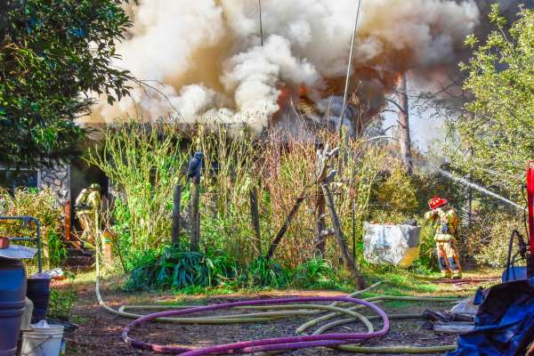 Animals perish in house fire