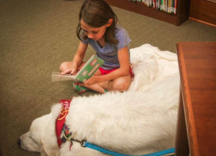 Children can improve reading skills by reading to therapy dogs