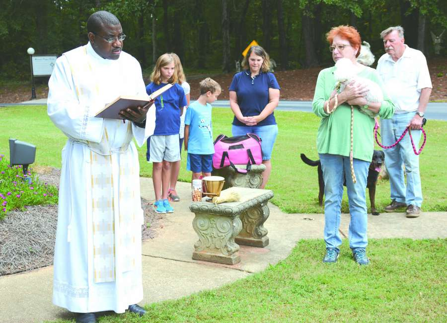 Dogs, cats, squirrel, chinchilla blessed on St. Francis Day