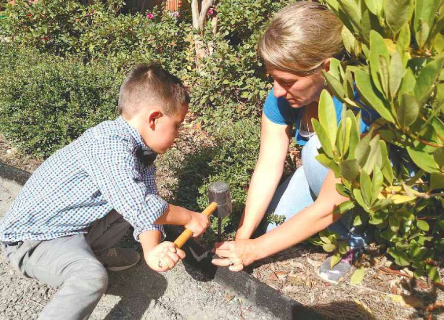 Welch STEM Garden growing a crop of learning opportunities