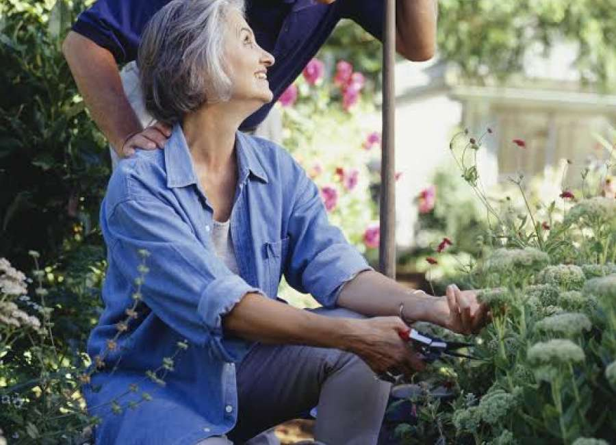 Changing seasons in a gardener's life