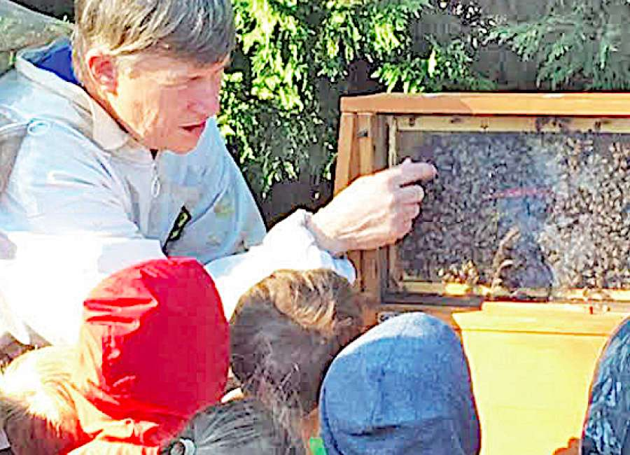 Local organization gives folks a taste of beekeeping